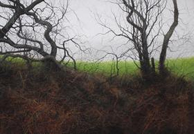 'On the Downs - Winter'