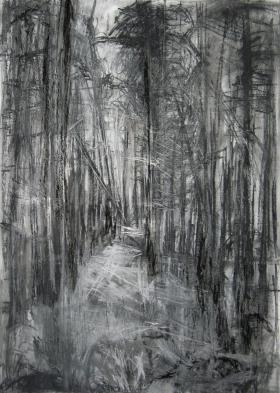 'Silpho Forest', Janine Baldwin, pastel, charcoal and graphite on paper, 67 x 48cm, £675